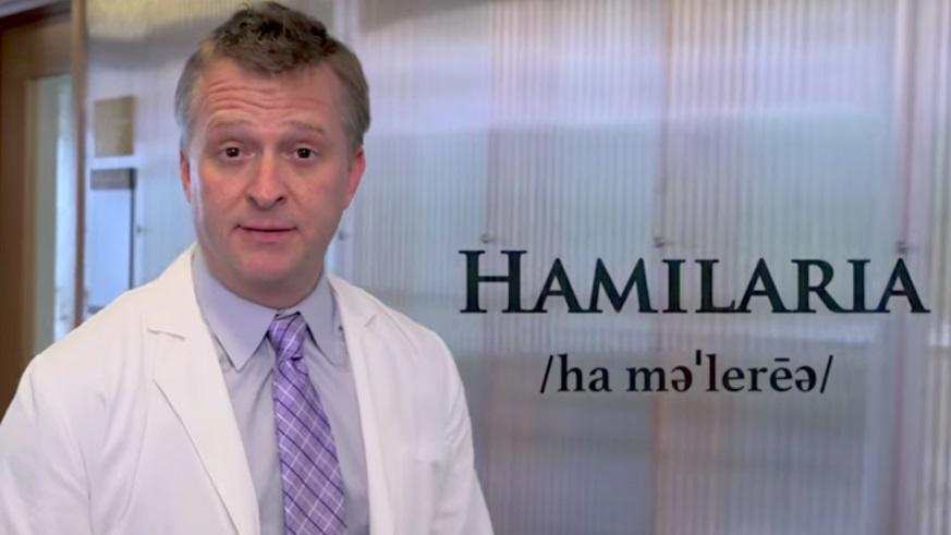 Hamilaria